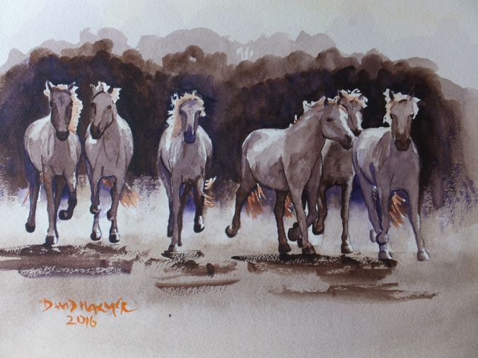wild-horses-of-the-camargue-finished-painting