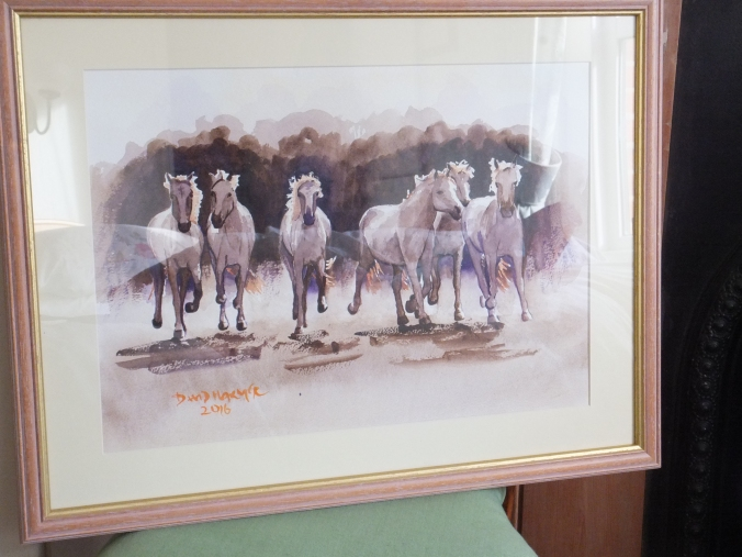 wild-horses-of-the-camargue-framed