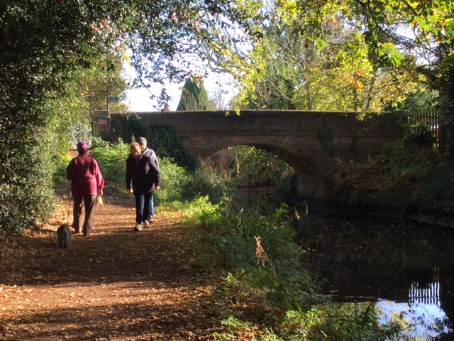 Basingstoke Canal Bridge