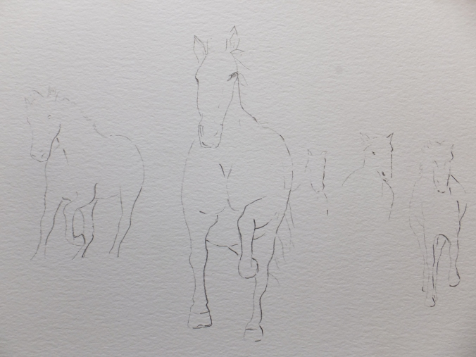 Galloping Horse Drawing